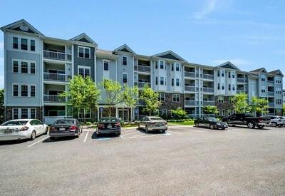 Reading Condo/Townhouse New: 36 Augustus Court #2013