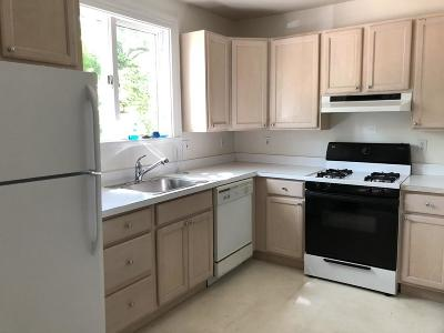 Newton Rental New: 171 Charlesbank Rd #171