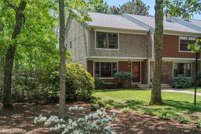 Mashpee Condo/Townhouse For Sale: 195 Falmouth Rd (Sea Oaks) #3A
