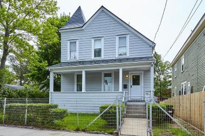 Boston Single Family Home New: 58 Catherine St