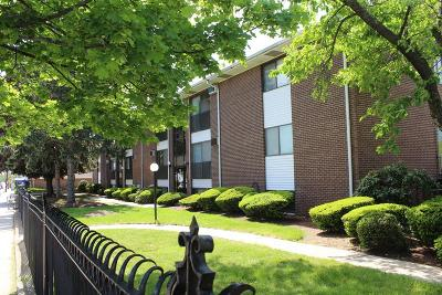 Waltham Condo/Townhouse Under Agreement: 172 River St #B2
