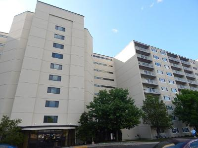 Quincy Condo/Townhouse Under Agreement: 200 Cove Way #313