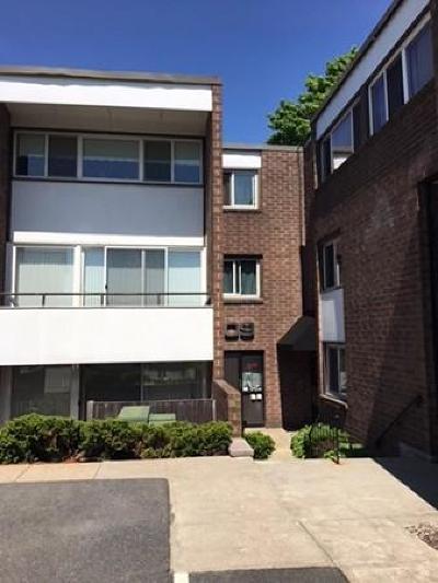 Stoughton Condo/Townhouse Contingent: 109 Walnut St #3