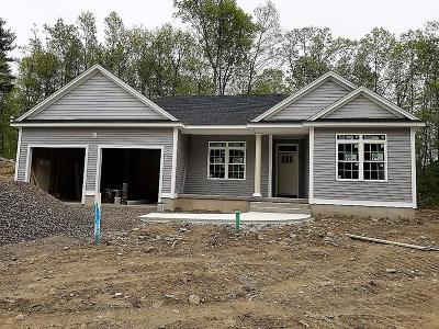 Belchertown Single Family Home For Sale: 20 Magnolia Lane