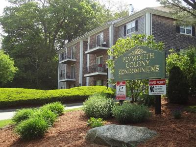 Plymouth Condo/Townhouse New: 1 Chapel Hill Dr #12