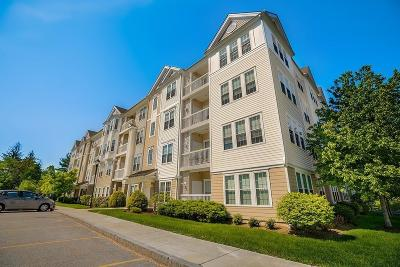 Waltham Condo/Townhouse Under Agreement: 107 Clocktower Drive #309