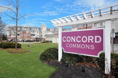Concord Condo/Townhouse Under Agreement: 95 Conant St #209