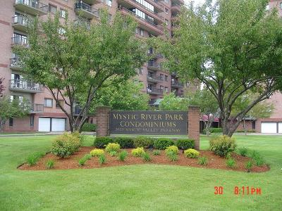 Medford Condo/Townhouse For Sale: 3920 Mystic Valley Pkwy #114