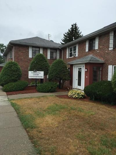 Waltham Condo/Townhouse Under Agreement: 182 River St #182