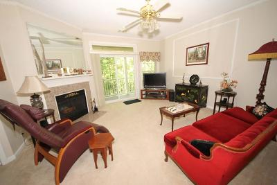 Braintree Condo/Townhouse For Sale: 163 Tyson Commons Ln #163