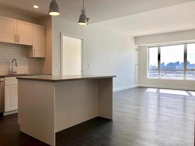 Somerville Rental For Rent: 449 Canal Street #814