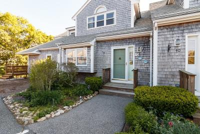 Bourne Condo/Townhouse Under Agreement: 41 Harbor Hill Drive #41