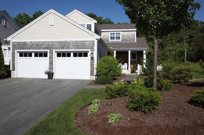 Condo/Townhouse For Sale: 33 Conifer Hill #33