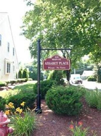 Maynard Condo/Townhouse Under Agreement: 216 Main Street #A2