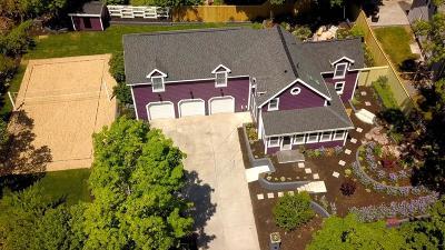 Saugus Single Family Home For Sale: 29 Park St
