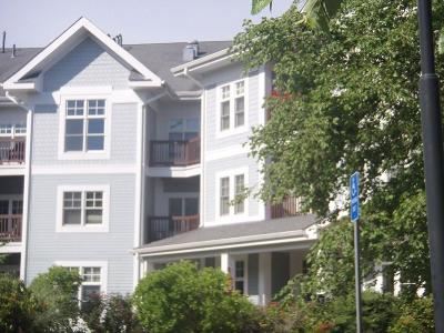 Braintree Condo/Townhouse Under Agreement: 501 Commerce #2101