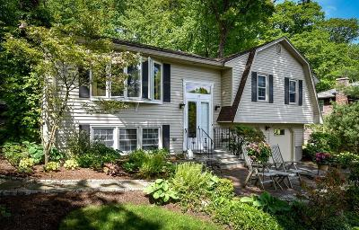 Framingham Single Family Home For Sale: 19 Duggan Dr