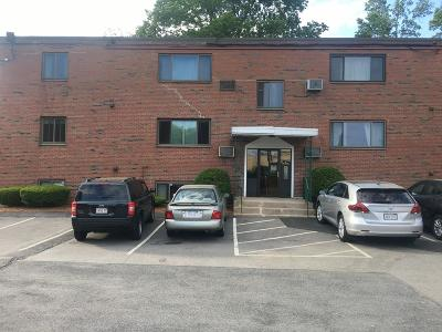 Framingham Condo/Townhouse For Sale: 79 Nicholas Rd #F