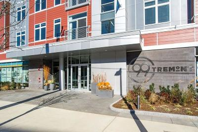 Condo/Townhouse Contingent: 99 Tremont Street #215