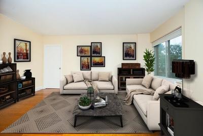 Brookline Condo/Townhouse For Sale: 22 Chestnut Pl #108