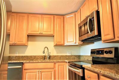 MA-Suffolk County Condo/Townhouse For Sale: 56 Coffey Street #9