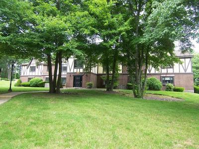 Braintree Condo/Townhouse Under Agreement: 14 Royal Lake Drive #6