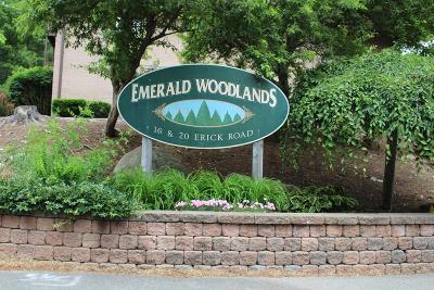 Mansfield Condo/Townhouse Under Agreement: 20 Erick Rd #32