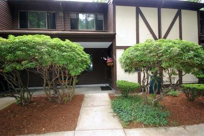 Franklin Condo/Townhouse Under Agreement: 106 Highwood Dr #106