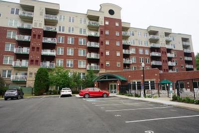 Middleton Condo/Townhouse Under Agreement: 36 Village Rd #613