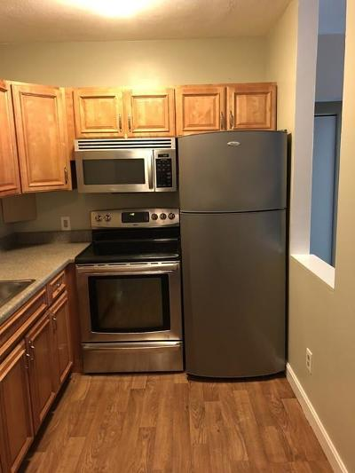 Framingham Condo/Townhouse New: 10 Kendall Ave #3