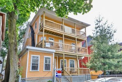 Multi Family Home New: 85 Brunswick St