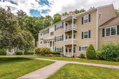 Andover Condo/Townhouse Under Agreement: 450 Brookside Drive #K