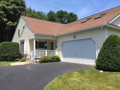 Southborough Condo/Townhouse New: 17 Wildwood Drive #17