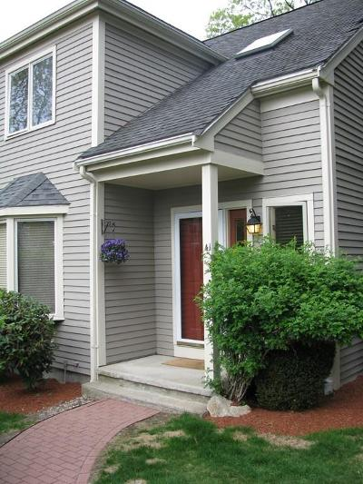 Weymouth Condo/Townhouse New: 41 Old Quarry Dr #41