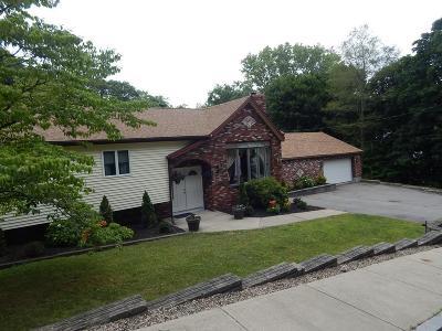 Quincy Single Family Home New: 139 Grove Street