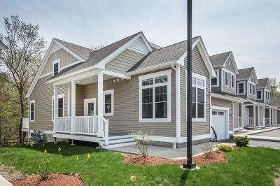 Woburn Condo/Townhouse Under Agreement: 855 Main Street #15