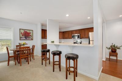Wakefield Condo/Townhouse For Sale: 974 Main St #13
