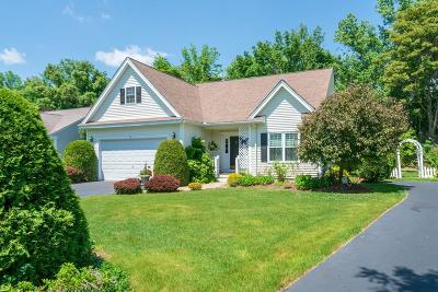 Southborough Single Family Home For Sale: 19 Wildwood Dr