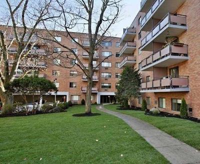Arlington Condo/Townhouse Sold: 60 Pleasant St #425