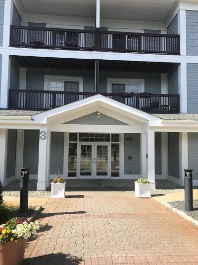 Braintree Condo/Townhouse New: 501 Commerce Dr #3208