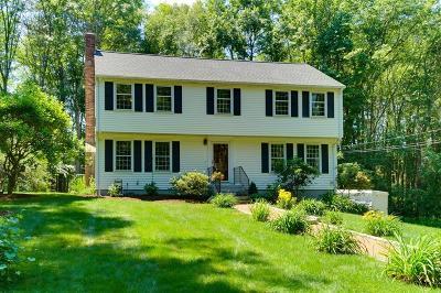 Holliston Single Family Home For Sale: 215 Fiske St