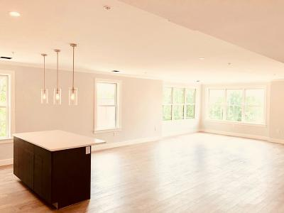 Braintree Condo/Townhouse For Sale: 9 Independence Ave #205