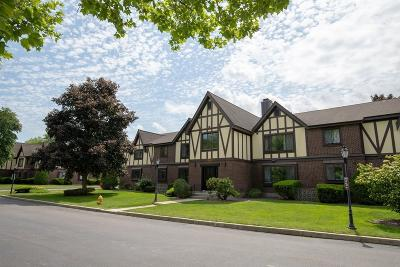Braintree Condo/Townhouse Under Agreement: 4 Royal Lake Dr #2