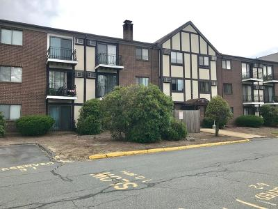 Randolph Condo/Townhouse For Sale: 159 Bittersweet Ln #101
