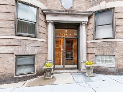 Brookline Condo/Townhouse For Sale: 5 Park Street #2