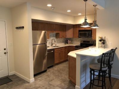 Medford Condo/Townhouse Under Agreement: 48 Forest St #304