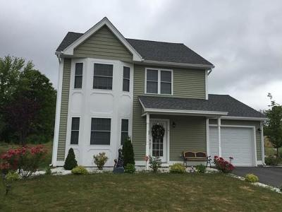 Lowell Single Family Home Contingent: 20 Adie Way