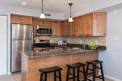 Somerville Condo/Townhouse Under Agreement: 23 Elm St #209