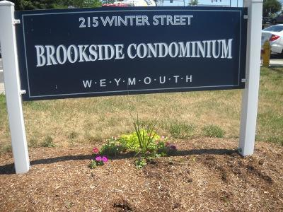 Weymouth Condo/Townhouse For Sale: 215 Winter St #4B