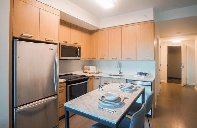 Rental Under Agreement: 101 Beverly Street #9V